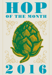 Hop of the Month 2016 Generic